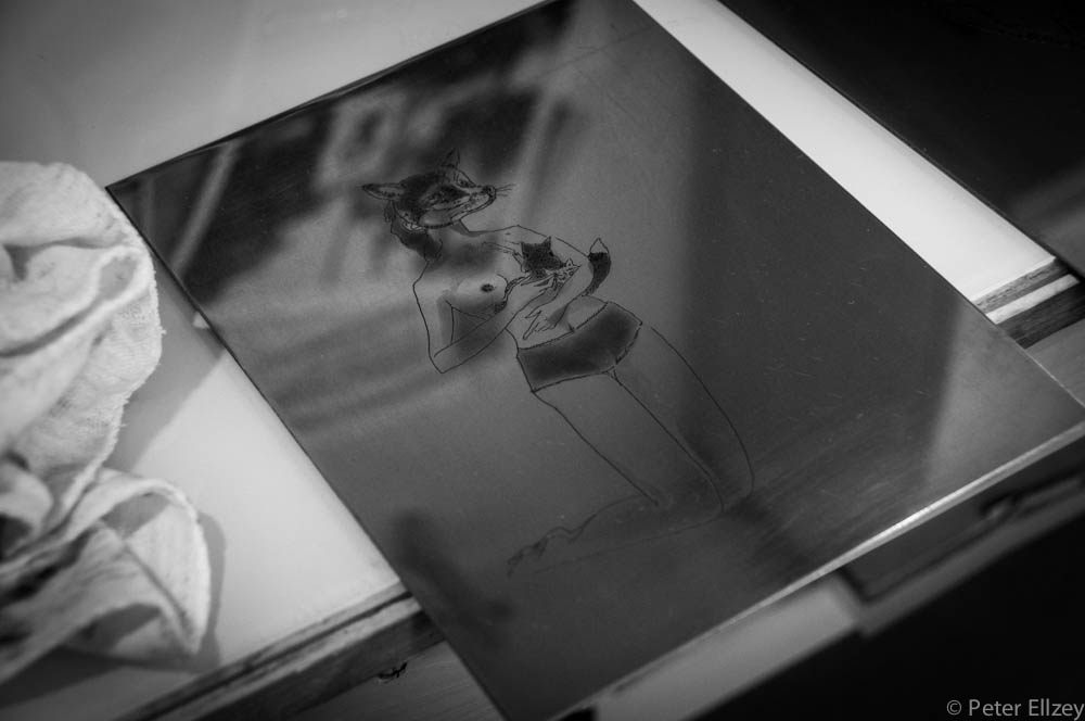 Peregrine-3.jpg